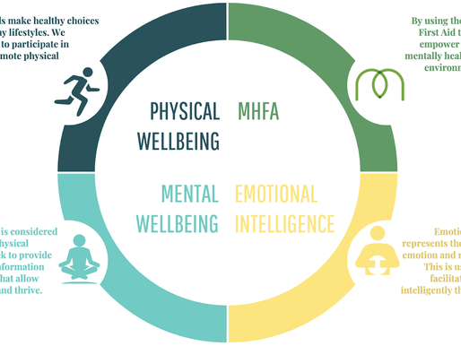 Mental Health and Wellbeing Update