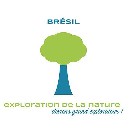 BRÉSIL - Exploration de la nature
