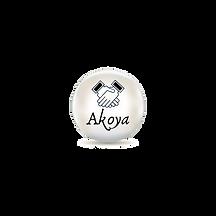 Copy of Akoya Insurance (12).png