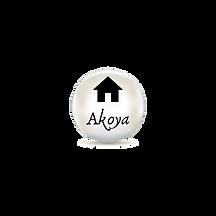 Copy of Akoya Insurance (14).png
