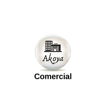 Copy of Akoya Insurance (16).png