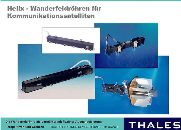 202008_thales_wanderfeldroehren.jpg