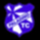 Logotipo_Paladino_PNG.png