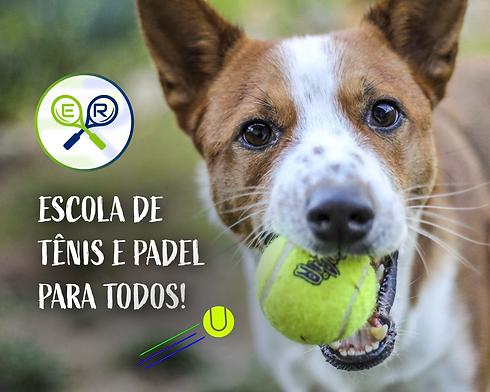 Dog 2_Prancheta 1.png