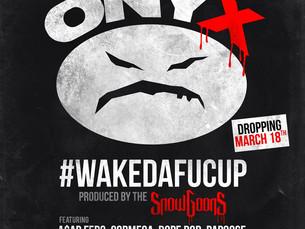 #Wakedafucup Vinyl