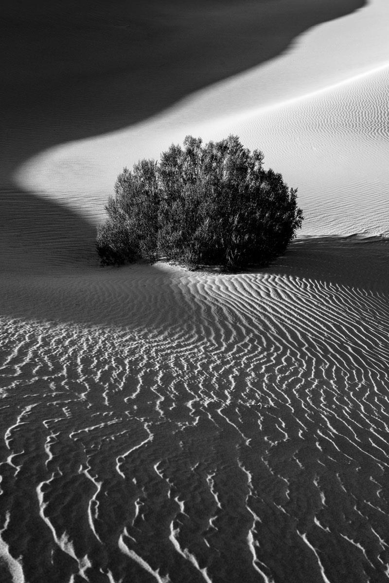 © Eric Renard