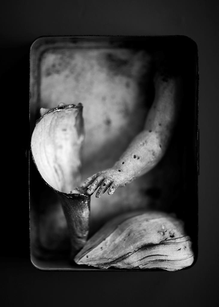 © Geoffrey Agrons