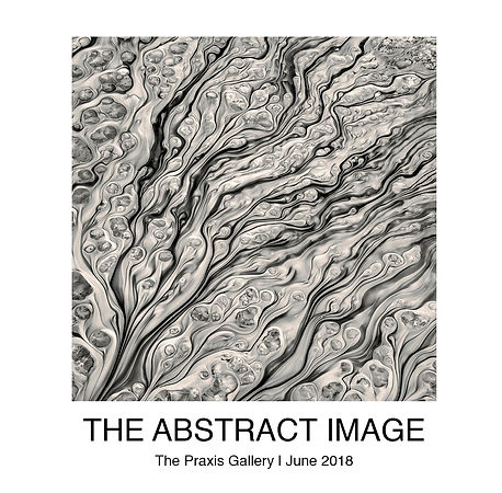 The Abstract Image softCover updated.jpg