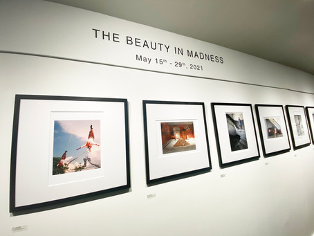 THE BEAUTY IN MADNESS • DOCUMENTATION
