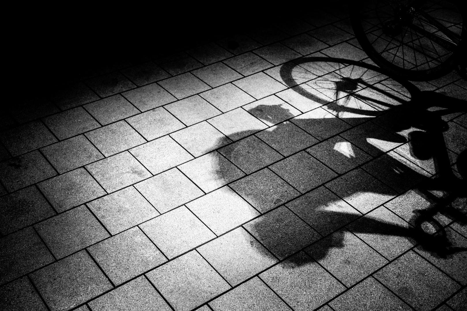 © Maarten Steunenberg