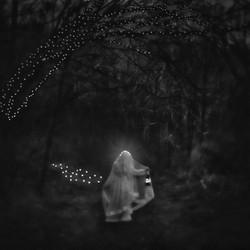 © Sharon Covert