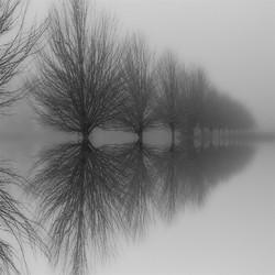 © Steven Kratka