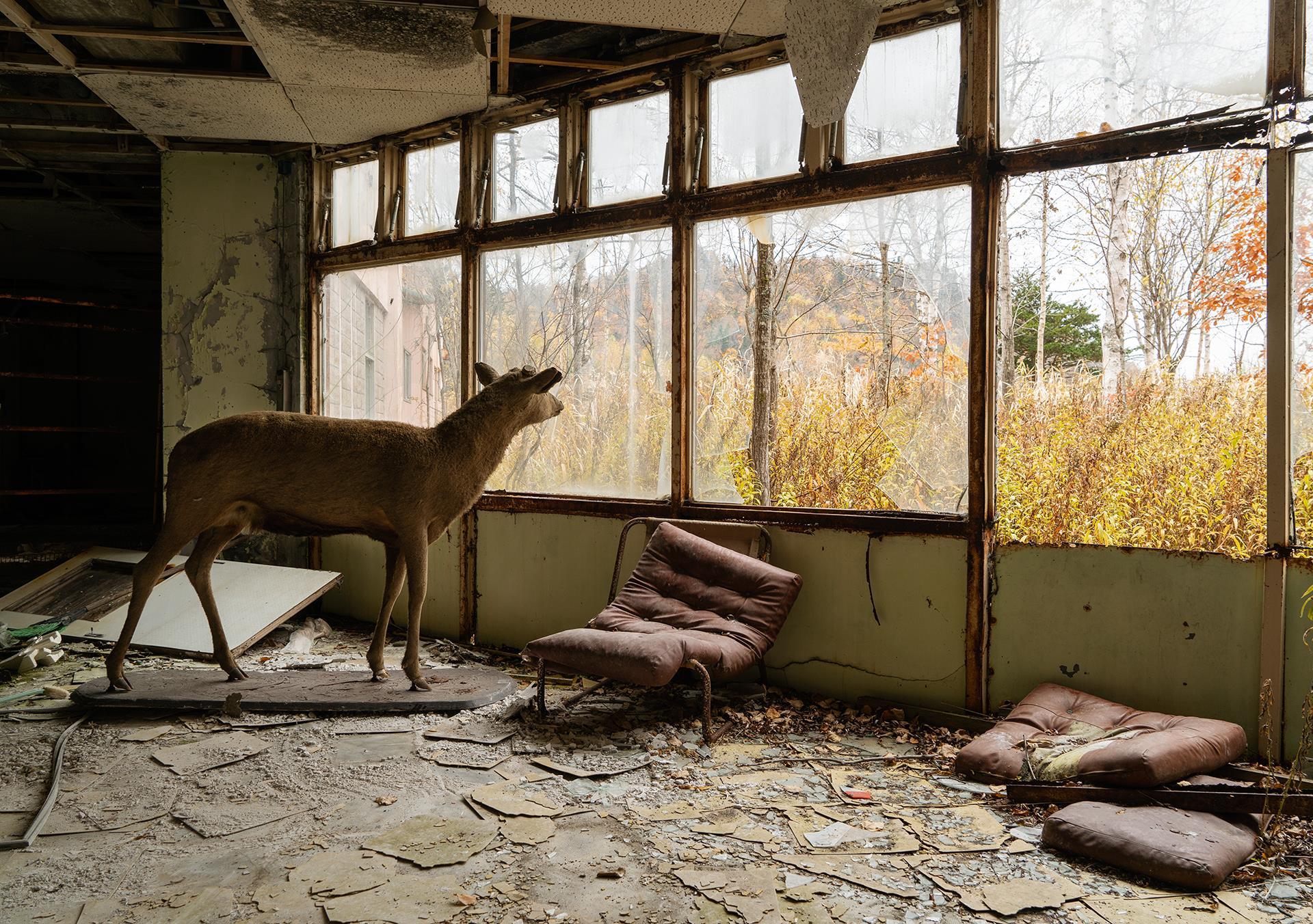 © Ryotaro Horiuchi