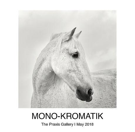 MONO - KROMATIK SoftCover (Resized).jpg