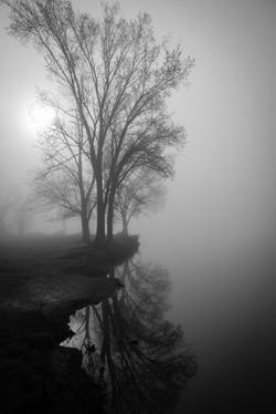 © Susan Holtz