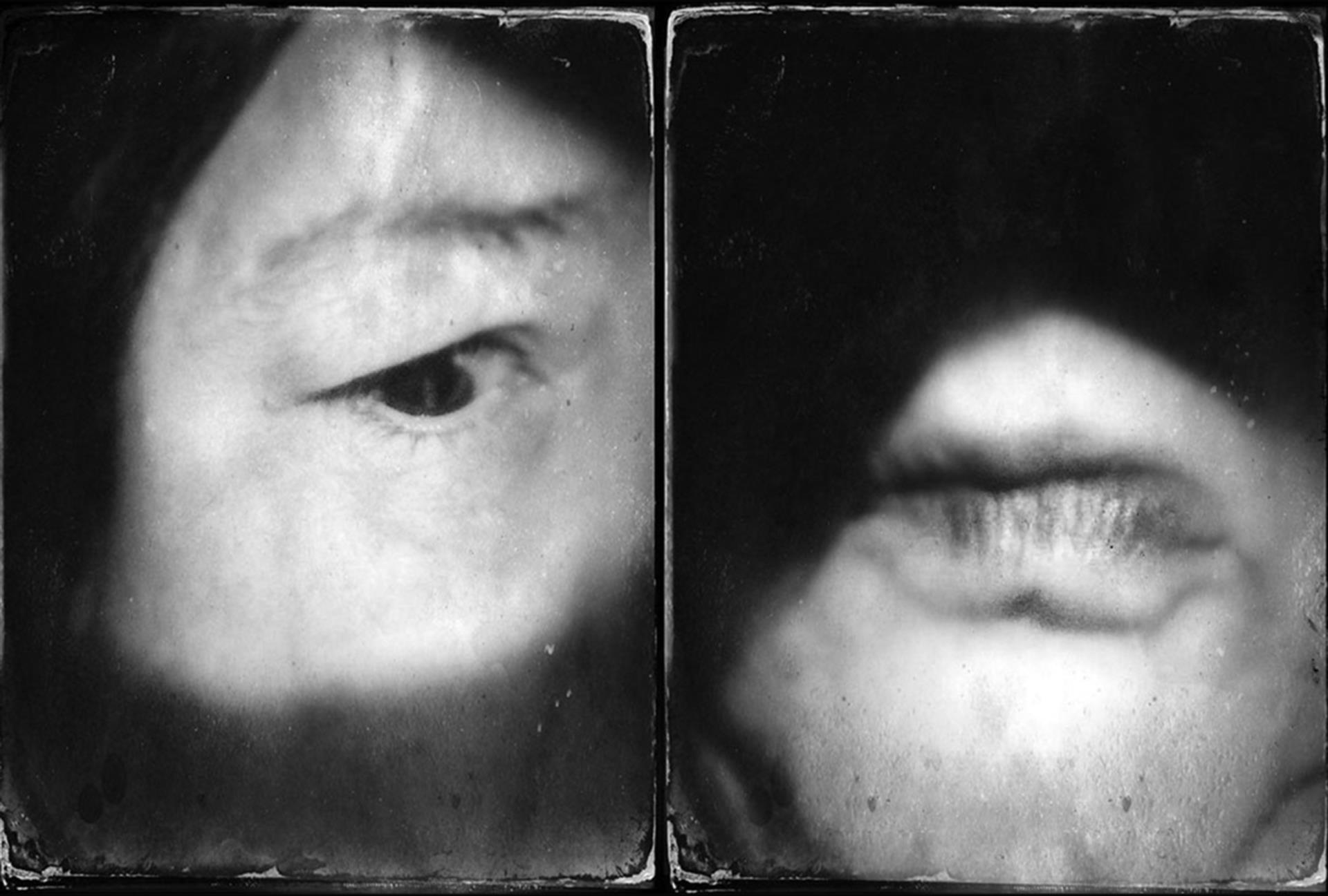© Diane Fenster