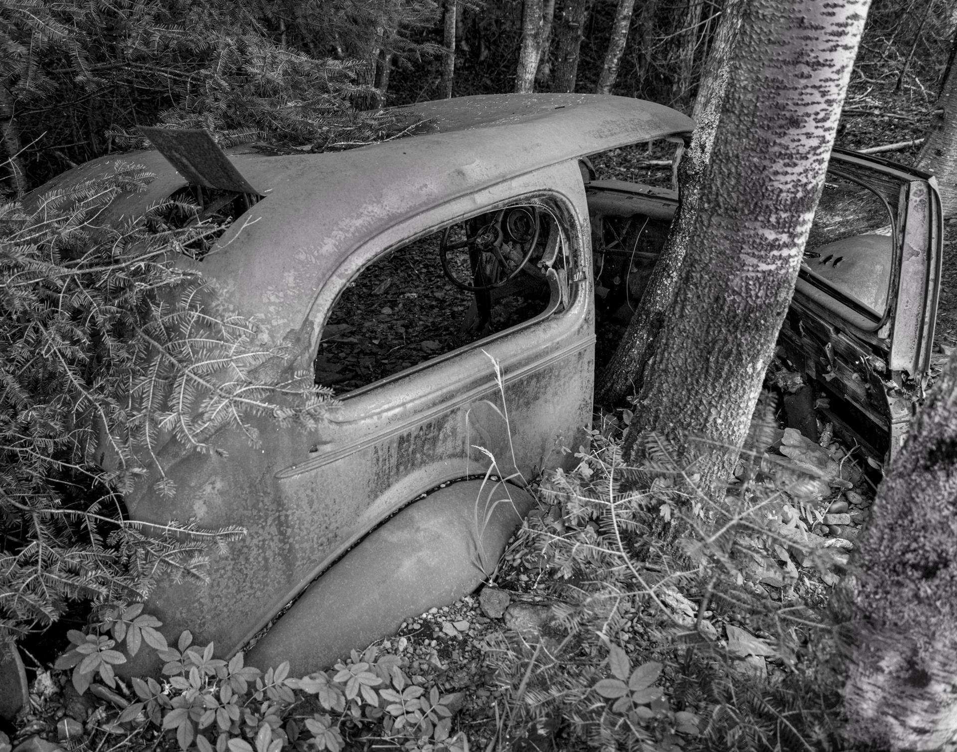 © Steve Simmer