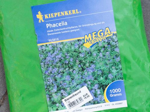 Phacelia, Bienenfreund Gründünger 1 kg