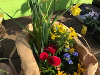 Care Paket Frühling