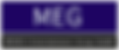 MEWES LOGO.png