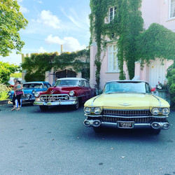 Classic Cars at Woodlands Castle