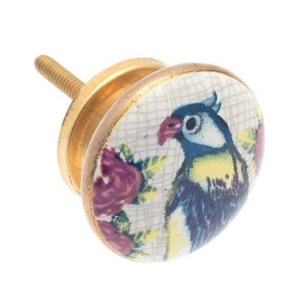 Ceramic Draw Knob -Parrot