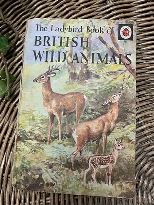 Vintage Lady Bird Book - British Wild Animals
