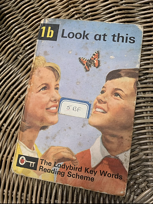 Vintage Lady Bird Book - Look at this