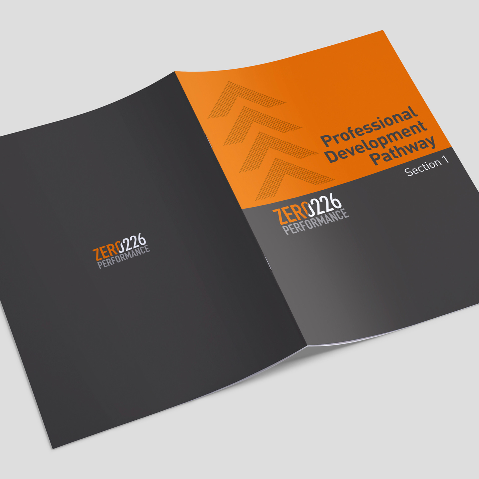 Zer0226 Performance Identity Design