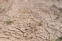 drought-19478_640.jpg