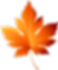 6-68847_graphic-freeuse-library-leaf-png