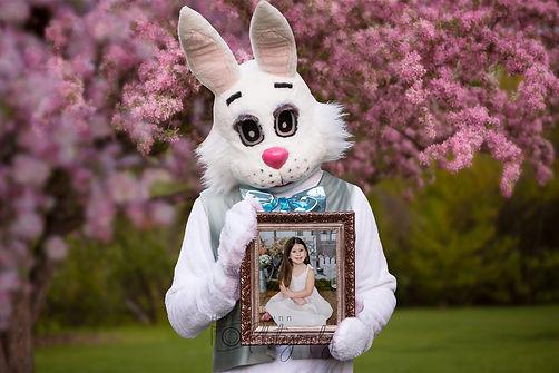 bunny4.jpg