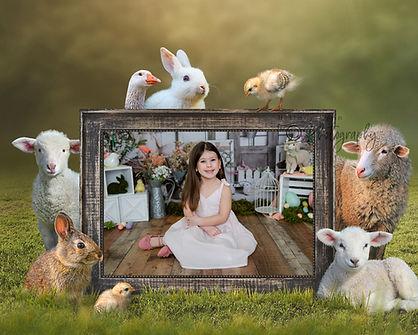 bunny7.jpg