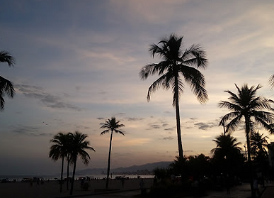 foto1.PNG