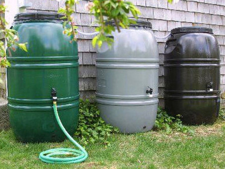 Rain Barrels Help Our Gardens and the Great Bay