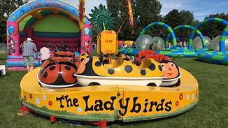 Ladybirds1.jpg