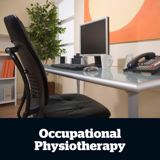 These  services  include  pre-employment  assessments,  graduated  return-to-work  plans  and  workplace  ergonomic  assessments.