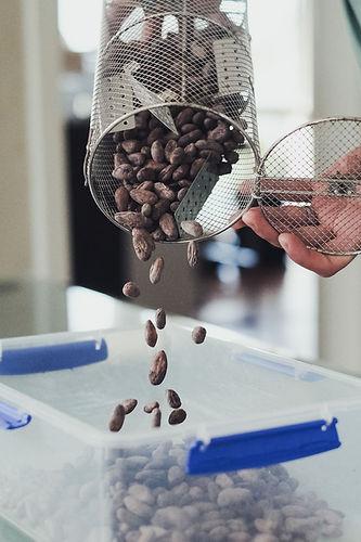 Roasted beans  (1).jpg