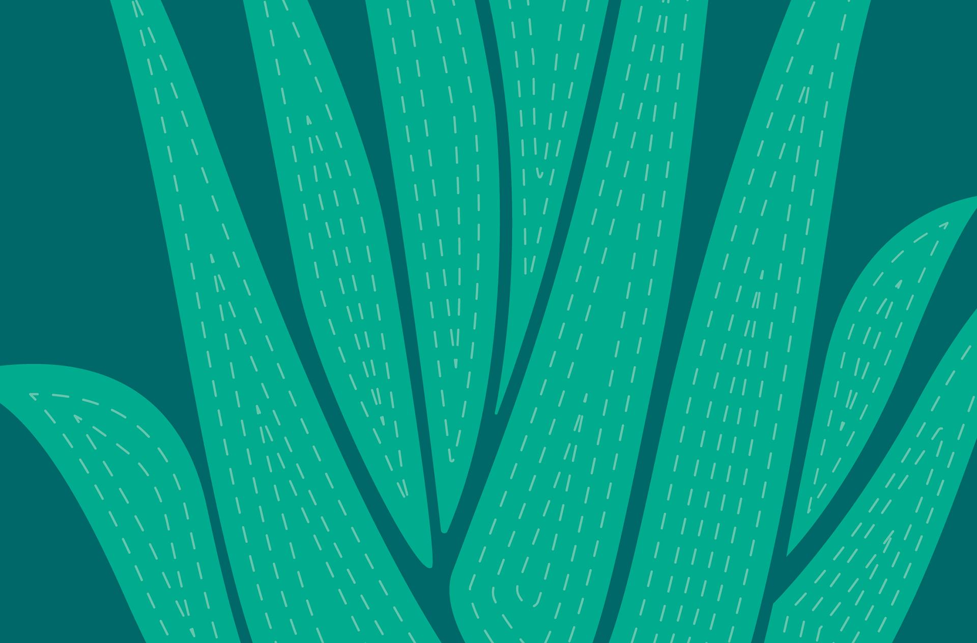 Pattern inspired from Aloe vera