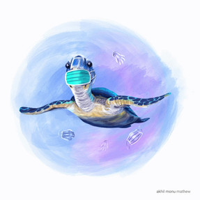 Oceans day turtle