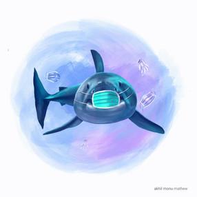 Oceans day shark