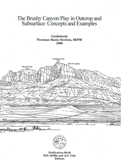 The Brushy Canyon Play in Outcrop and Subsurface: Concepts and Examples