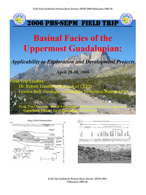 Basinal Facies of the Uppermost Guadalupian: Applicability to Exploration