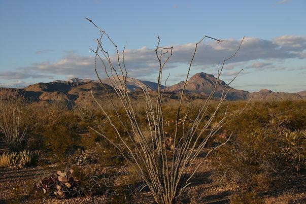 Geitgey_Desert View.JPG