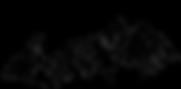 CNG Logo.png