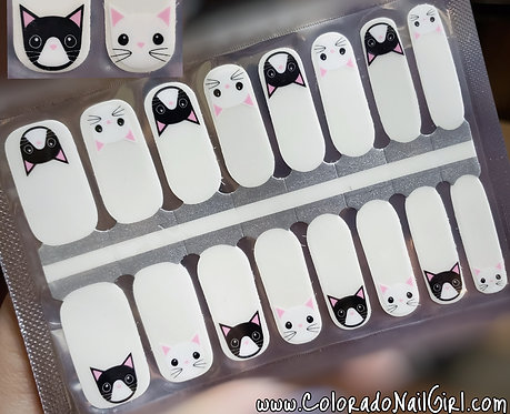 Peek-a-Boo Cats