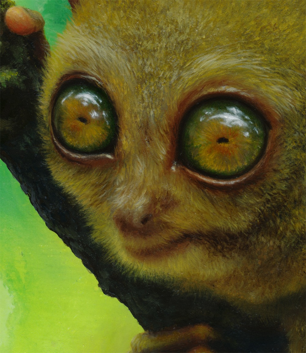 detail, tarsier eye painting