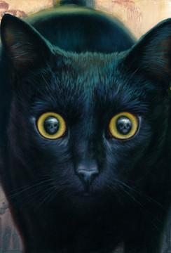 Skull Cat oil painting