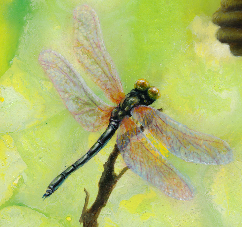 detail, dragonfly painting