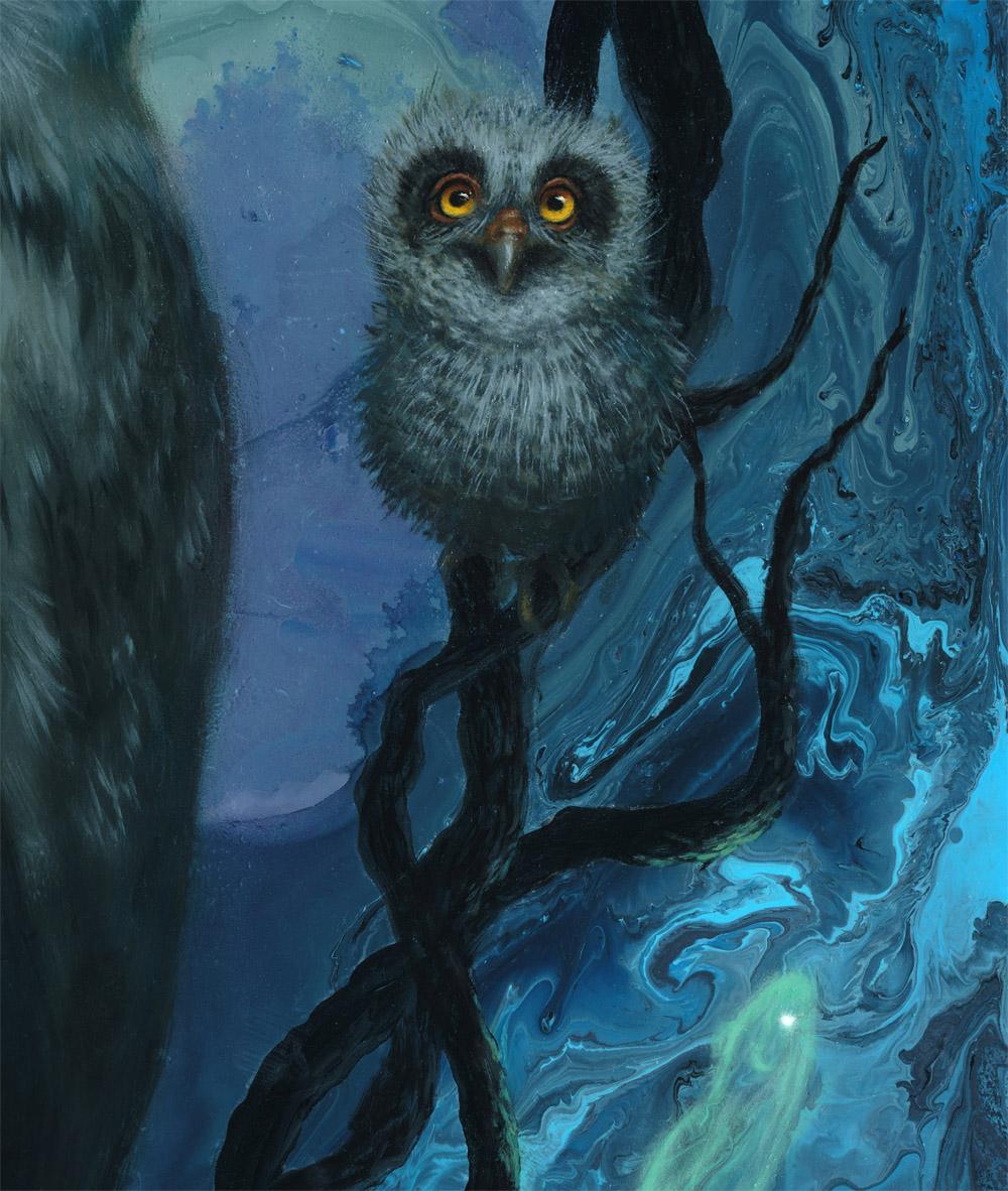 Detail Baby Owl